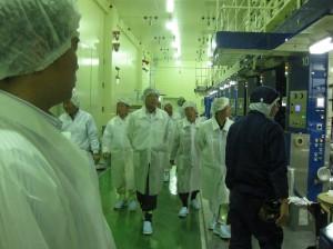 工場視察の様子